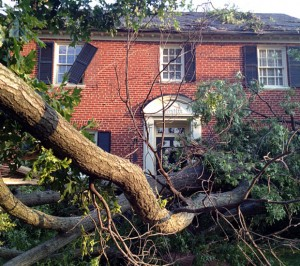 storm damage repair london